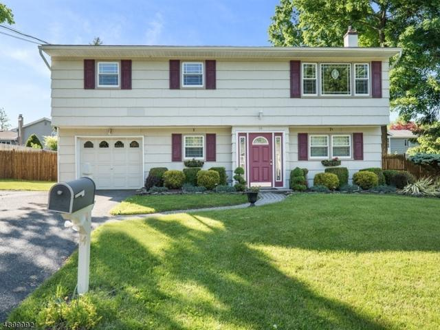 14 Birch Dr, Newton Town, NJ 07860 (MLS #3559100) :: Coldwell Banker Residential Brokerage
