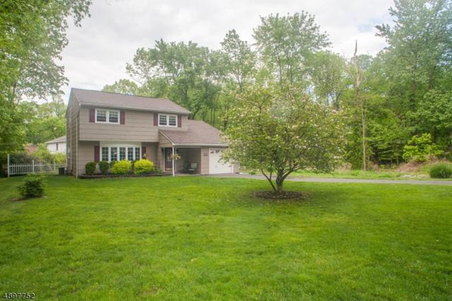106 Rollins Trl, Hopatcong Boro, NJ 07843 (MLS #3559107) :: Coldwell Banker Residential Brokerage