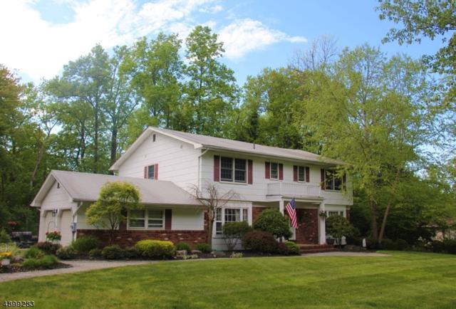 4 Granada Dr, Parsippany-Troy Hills Twp., NJ 07950 (MLS #3559261) :: Mary K. Sheeran Team
