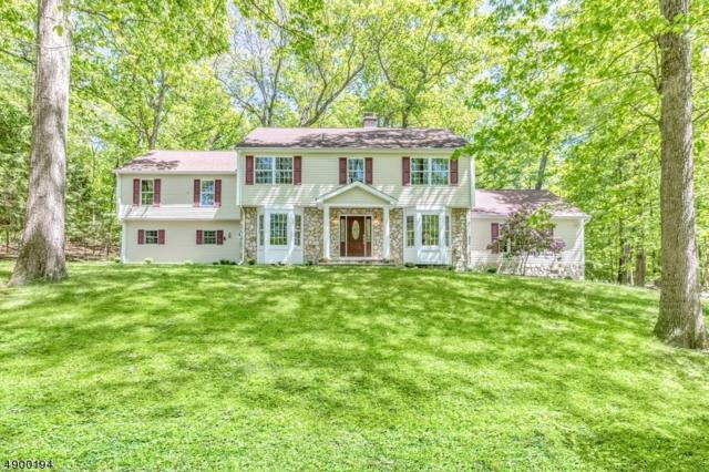 505 Pepperidge Tree Ln, Kinnelon Boro, NJ 07405 (MLS #3559280) :: Pina Nazario