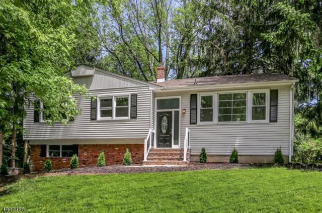 7 E Circuit Dr, Roxbury Twp., NJ 07876 (MLS #3559301) :: The Dekanski Home Selling Team