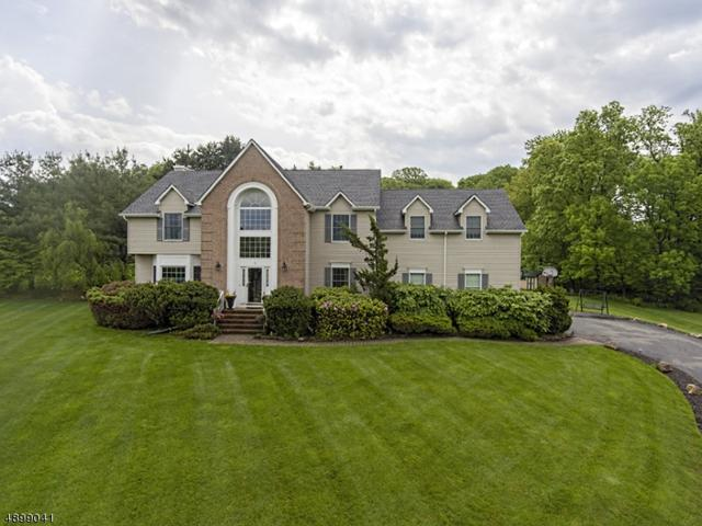 2 Portsmouth Ct, Washington Twp., NJ 07853 (MLS #3559703) :: Mary K. Sheeran Team