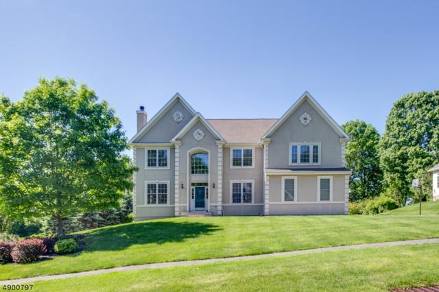 6 Shadow Hill Way, Washington Twp., NJ 07840 (MLS #3559883) :: William Raveis Baer & McIntosh
