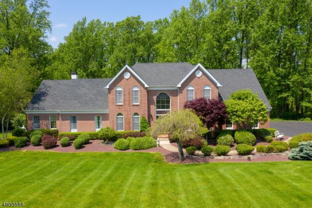 9 Rockhill Dr, Bethlehem Twp., NJ 08827 (MLS #3559908) :: SR Real Estate Group