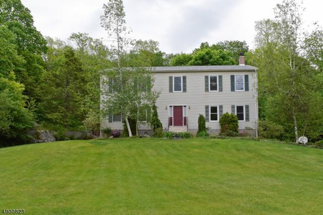 24 Woodland Hills Dr, Vernon Twp., NJ 07461 (MLS #3560003) :: SR Real Estate Group