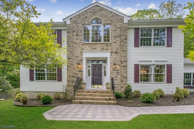 12 Cathy Lane, Mount Olive Twp., NJ 07836 (MLS #3560608) :: REMAX Platinum