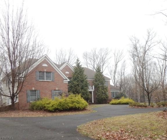 19 Laurel Mountain Way, Tewksbury Twp., NJ 07830 (MLS #3560935) :: REMAX Platinum