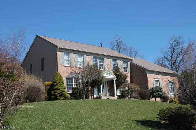 15 Old Schoolhouse Rd, Bethlehem Twp., NJ 08802 (MLS #3561171) :: SR Real Estate Group
