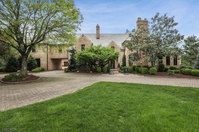 11 Colgate Ter, Harding Twp., NJ 07960 (MLS #3561569) :: Coldwell Banker Residential Brokerage
