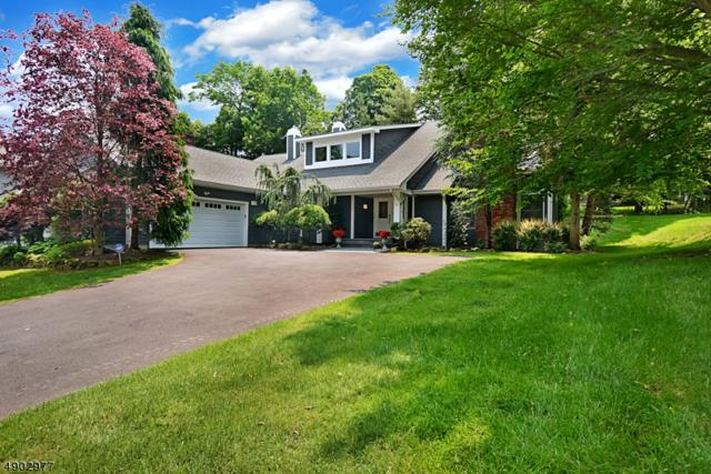 39 Gatehouse Rd, Bedminster Twp., NJ 07921 (#3562151) :: Daunno Realty Services, LLC