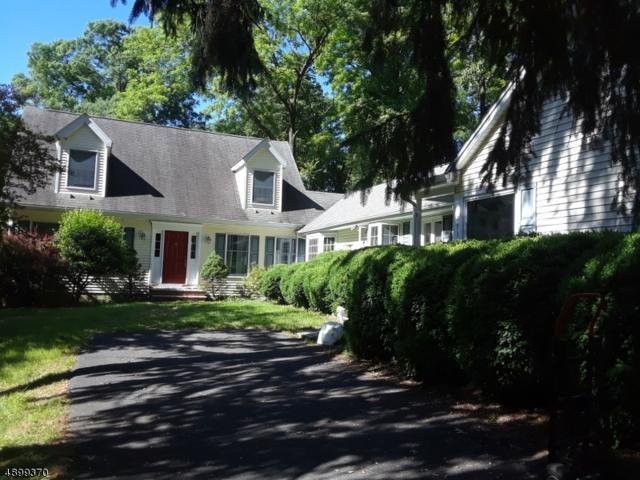 293 Stanton Mountain Rd, Clinton Twp., NJ 08833 (MLS #3562408) :: REMAX Platinum