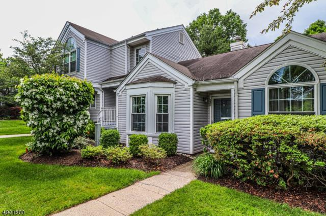 238 Long Meadow Rd, Bedminster Twp., NJ 07921 (#3562582) :: Daunno Realty Services, LLC