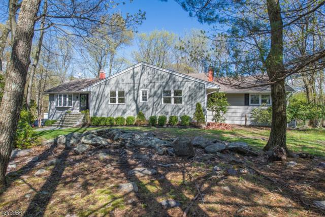 1 Sugar Hill Rd, Kinnelon Boro, NJ 07405 (MLS #3562781) :: Pina Nazario