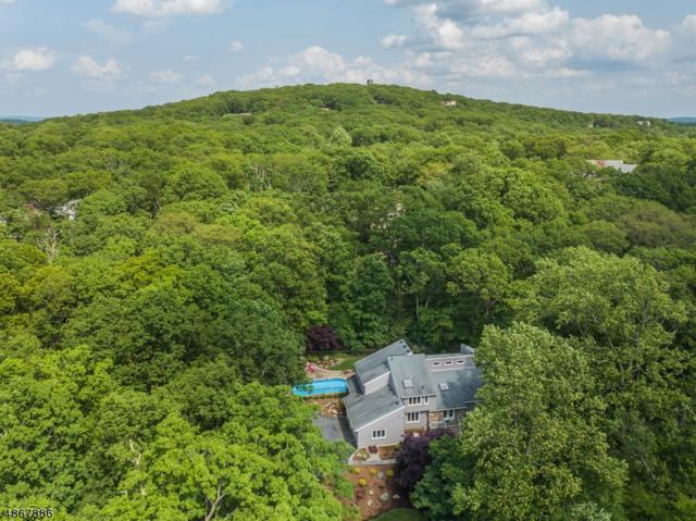 4 Tulip Tree Ter, Kinnelon Boro, NJ 07405 (MLS #3562951) :: SR Real Estate Group