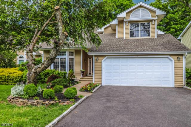 133 Autumn Ridge Rd, Bedminster Twp., NJ 07921 (#3563072) :: Daunno Realty Services, LLC