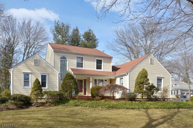 17 Cottonwood Rd, Morris Twp., NJ 07960 (MLS #3563093) :: William Raveis Baer & McIntosh