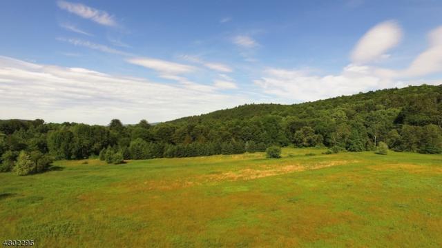 197 River Rd, Montague Twp., NJ 07827 (MLS #3563291) :: William Raveis Baer & McIntosh