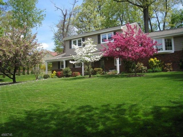 12 Hamilton Pl, Montville Twp., NJ 07058 (MLS #3563319) :: William Raveis Baer & McIntosh