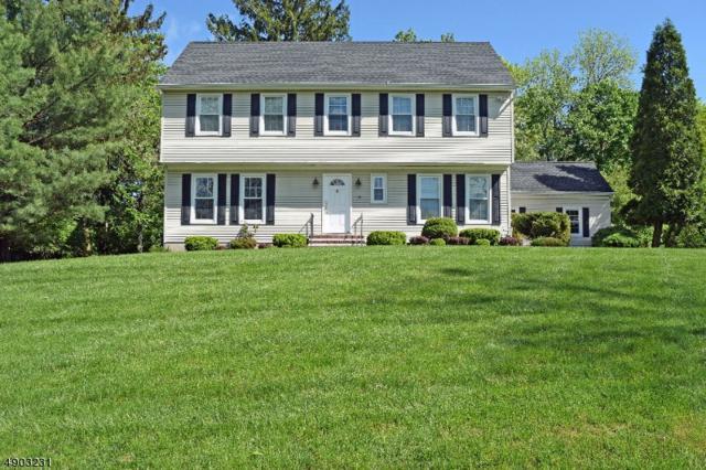 10 Compton Ct, Bernards Twp., NJ 07920 (MLS #3563357) :: Coldwell Banker Residential Brokerage