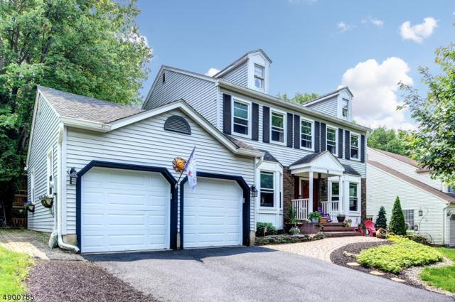 18 Fawn Run, Bloomsbury Boro, NJ 08804 (MLS #3563524) :: SR Real Estate Group