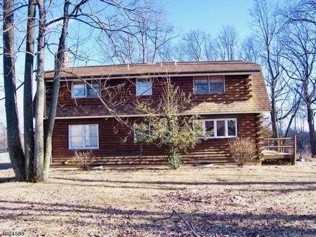 22 Schaaf Rd, Alexandria Twp., NJ 08804 (MLS #3563664) :: Weichert Realtors