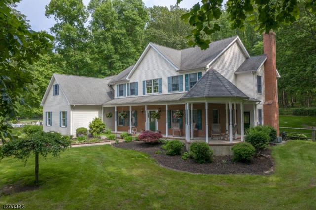 7 Berkshire Way, Holland Twp., NJ 08848 (MLS #3563890) :: SR Real Estate Group