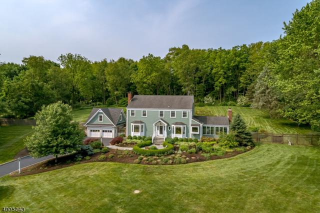 79 Lowery Lane, Mendham Boro, NJ 07945 (MLS #3563914) :: SR Real Estate Group