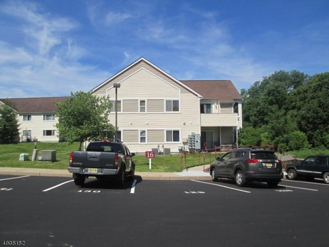 166 Falcon Ridge Way North #6, Hamburg Boro, NJ 07419 (MLS #3563982) :: REMAX Platinum