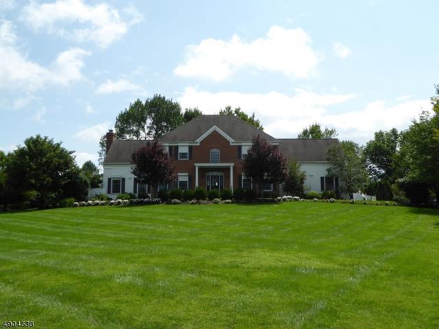 10 Hog Hollow Rd, Alexandria Twp., NJ 08867 (MLS #3564063) :: Weichert Realtors