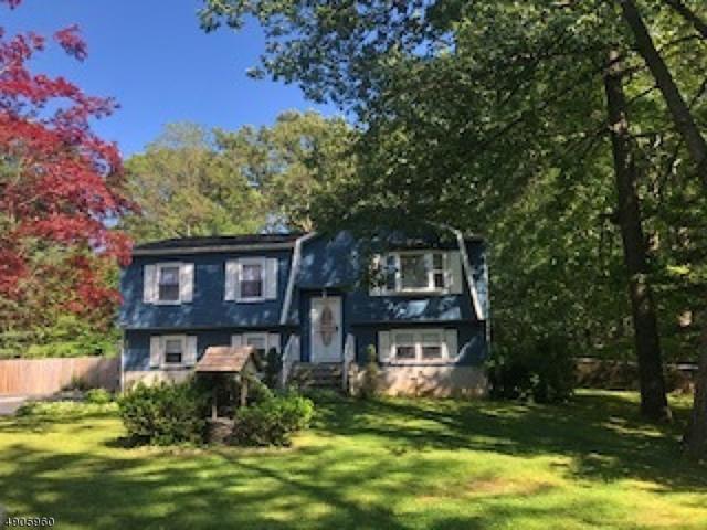 16 Harriet Way, Roxbury Twp., NJ 07850 (MLS #3564705) :: William Raveis Baer & McIntosh
