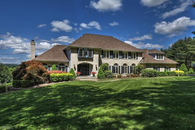9 Balbrook Dr, Mendham Boro, NJ 07945 (MLS #3564871) :: SR Real Estate Group