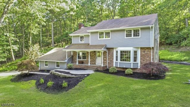 64 Green Hill Rd, Kinnelon Boro, NJ 07405 (MLS #3564902) :: The Dekanski Home Selling Team
