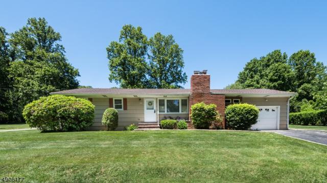 254 Sand Shore Rd, Mount Olive Twp., NJ 07828 (MLS #3564940) :: The Dekanski Home Selling Team