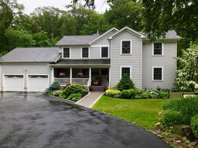 5 Wilke Way, Vernon Twp., NJ 07462 (MLS #3565140) :: REMAX Platinum