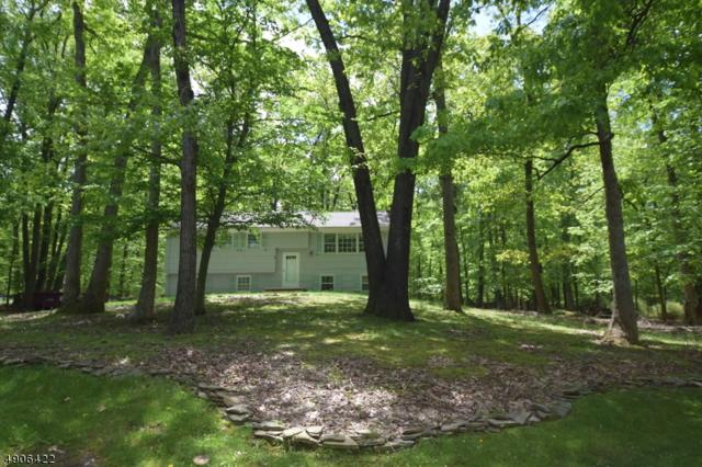 4 Red Hill Rd, Warren Twp., NJ 07059 (MLS #3565298) :: Pina Nazario