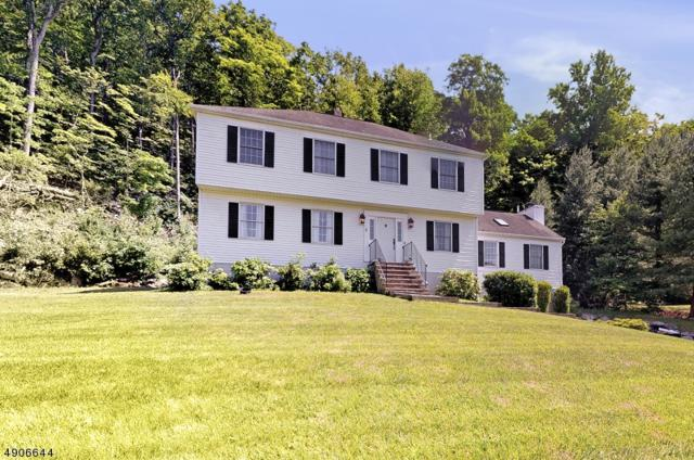 68 Brookwood Rd, Byram Twp., NJ 07874 (MLS #3565299) :: Weichert Realtors