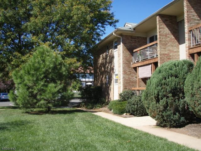 534 Andria Ave Apt 263 #263, Hillsborough Twp., NJ 08844 (MLS #3565448) :: The Sue Adler Team