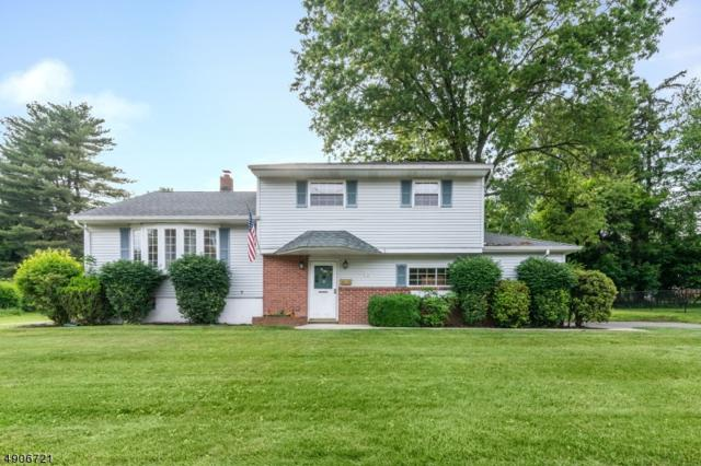 28 Honeyman Dr, Roxbury Twp., NJ 07876 (MLS #3565529) :: REMAX Platinum