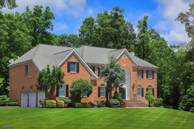 51 Blazier Rd, Bridgewater Twp., NJ 08836 (MLS #3565699) :: SR Real Estate Group