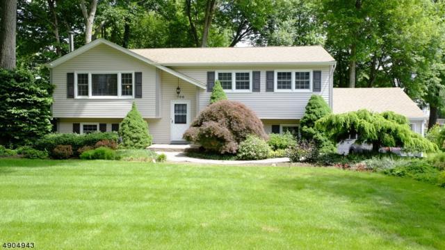 706 Hamilton Dr, Hackettstown Town, NJ 07840 (#3565702) :: Jason Freeby Group at Keller Williams Real Estate