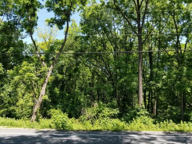 80 Route 519, Pohatcong Twp., NJ 08865 (MLS #3565708) :: SR Real Estate Group