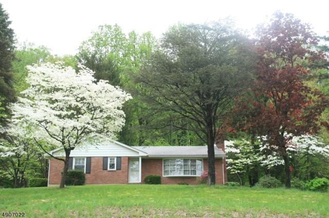 217 Richline Hill Rd, Greenwich Twp., NJ 08886 (#3565740) :: Jason Freeby Group at Keller Williams Real Estate