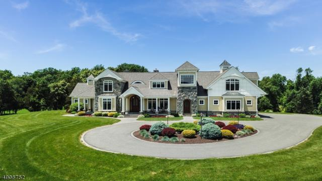 502 Maple Ln, Allamuchy Twp., NJ 07821 (#3565845) :: Jason Freeby Group at Keller Williams Real Estate