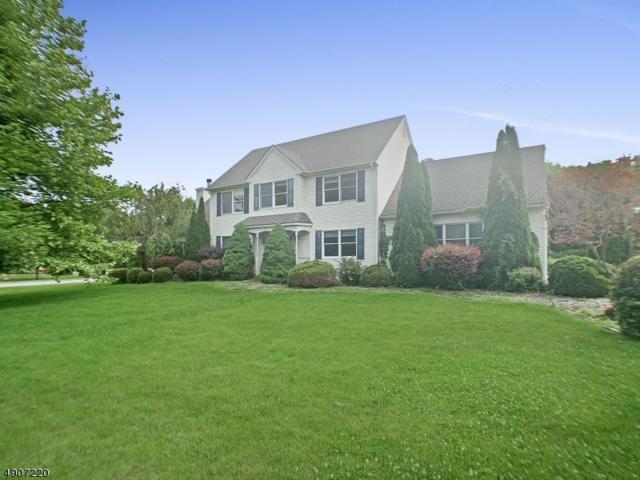 20 Warne Way, Franklin Twp., NJ 07882 (#3565901) :: Jason Freeby Group at Keller Williams Real Estate