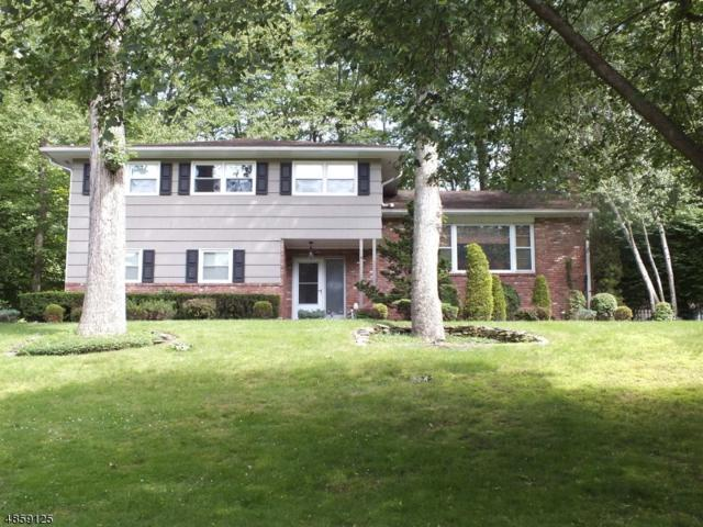 9 Old Mill Dr, Denville Twp., NJ 07834 (MLS #3566018) :: Weichert Realtors
