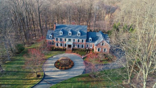 2 Manor Hill Dr, Bernardsville Boro, NJ 07924 (#3566301) :: Daunno Realty Services, LLC