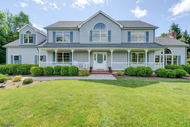 31 Red Oak Way, Montgomery Twp., NJ 08502 (#3566316) :: Daunno Realty Services, LLC