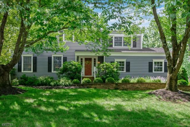 21 Florie Farm Rd, Mendham Boro, NJ 07945 (MLS #3566345) :: SR Real Estate Group