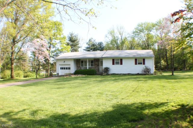 724 Marudy Dr, Union Twp., NJ 08802 (MLS #3566532) :: The Dekanski Home Selling Team