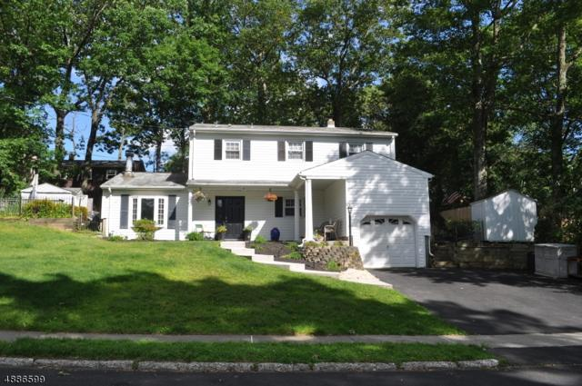 9 Oak Dr, Stanhope Boro, NJ 07874 (MLS #3566582) :: William Raveis Baer & McIntosh